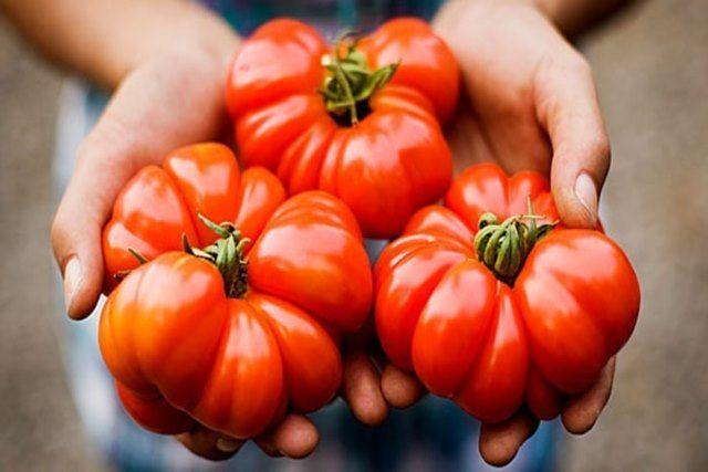 thuc-pham-Non-GMO-2